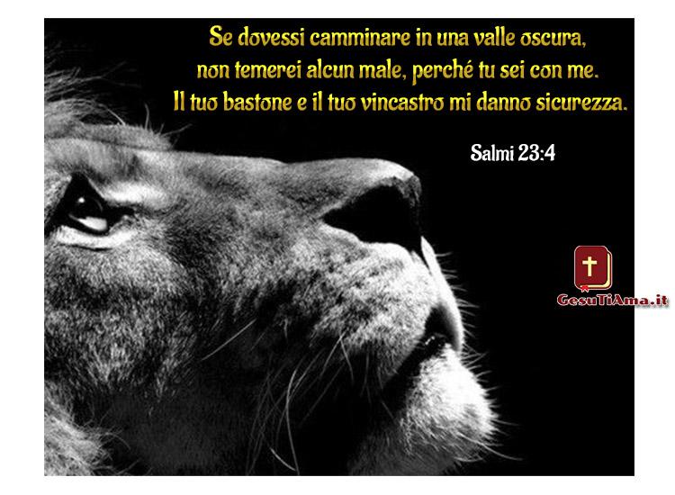 Frasi della Bibbia di incoraggiamento bellissime immagini religiose