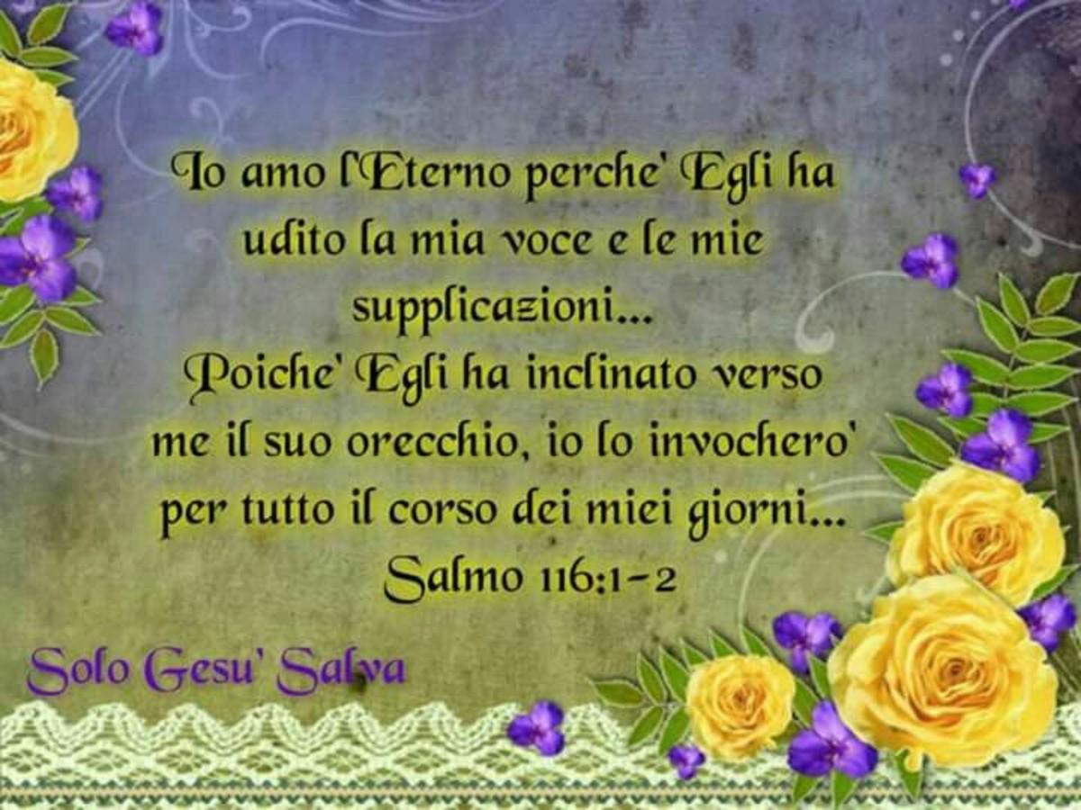 Salmo della Bibbia 8647