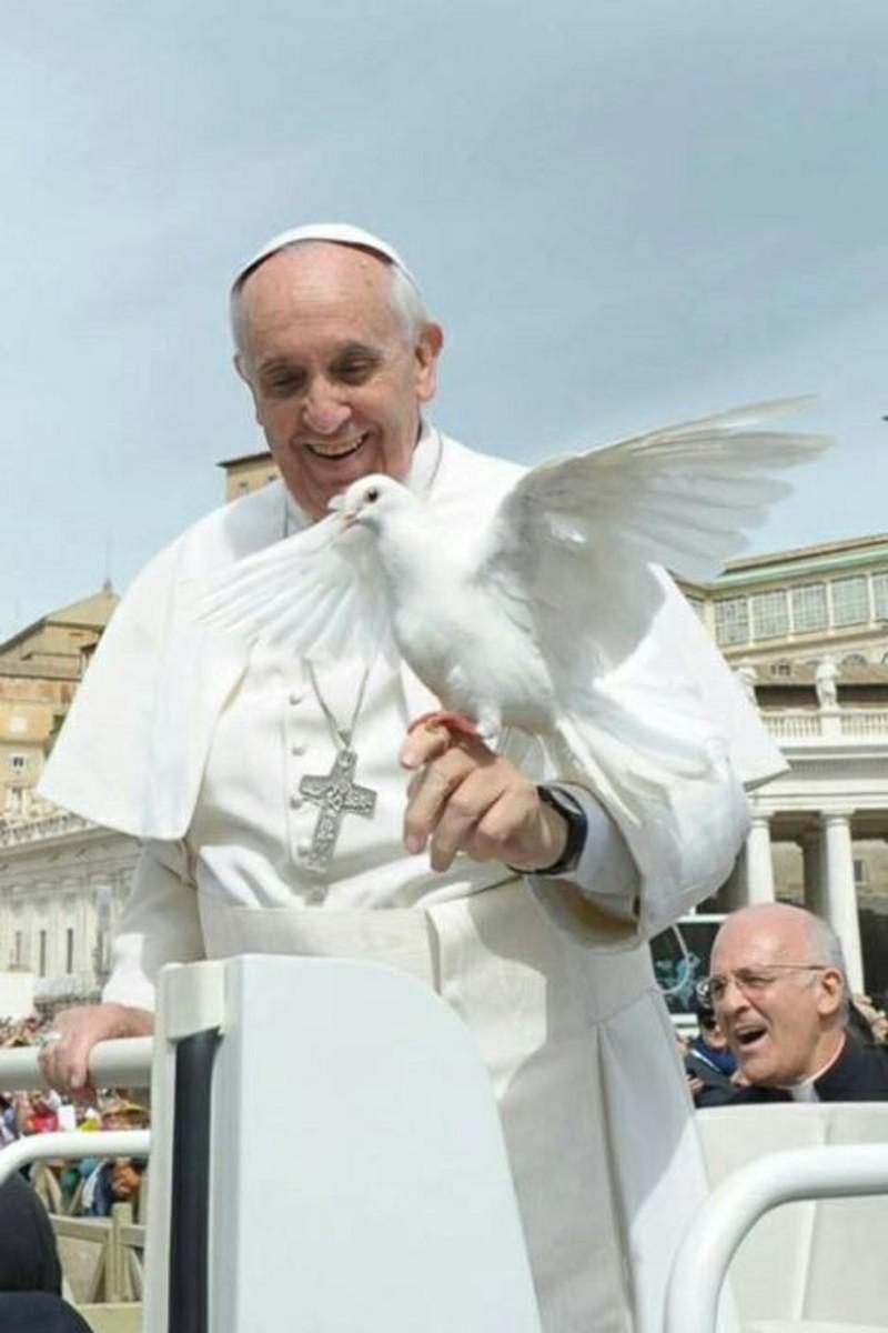 Scarica e condividi immagini Citazioni Papa Francesco (2)
