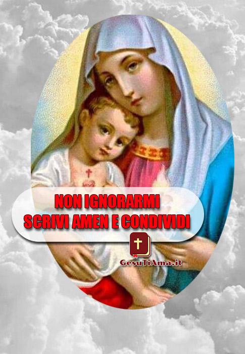 Immagini bellissime della Madonna da condividere sui gruppi Facebook religiosi