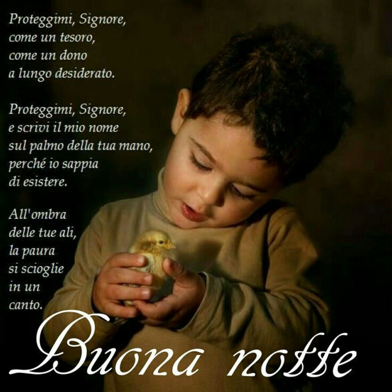 Immagini Buonanotte Della Madonna Gesutiama It