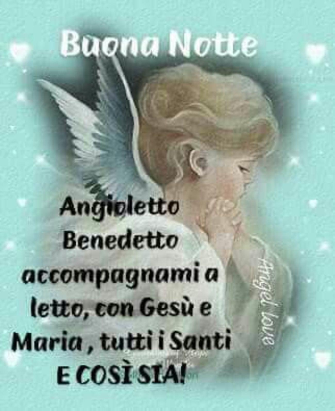 Serena Notte Madonnina 6806