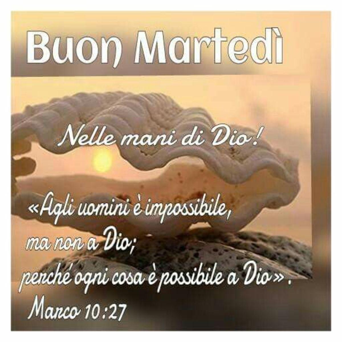 Buon Martedì nelle mani di Dio