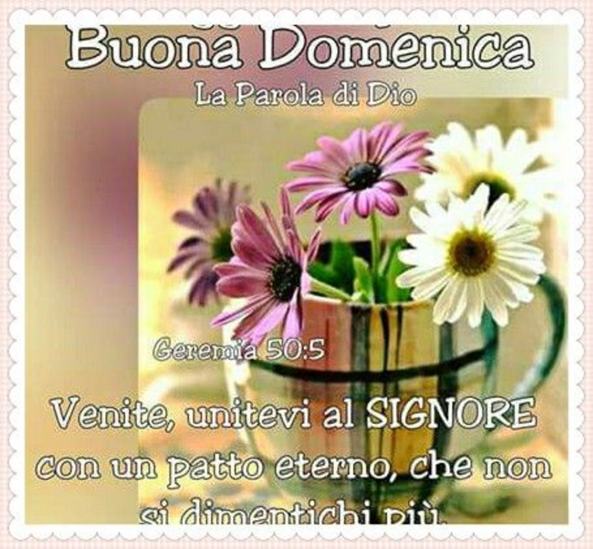 08cd71ea4ef Buona Domenica religioso WhatsApp - GesuTiAma.it