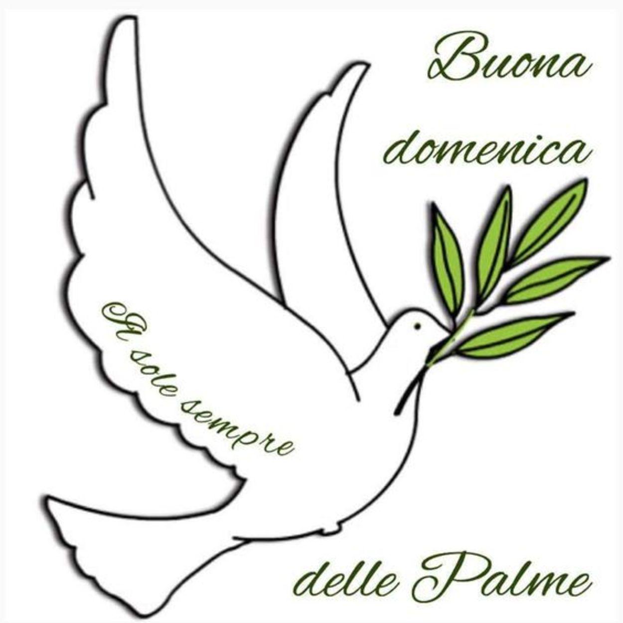 Buona Domenica delle Palme 113
